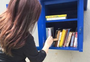 FreeLittleLibrary_WR2